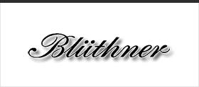 Модельный ряд Blüthner