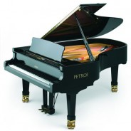Рояль P 210 PASAT