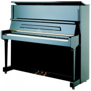 Пианино P 125 G1